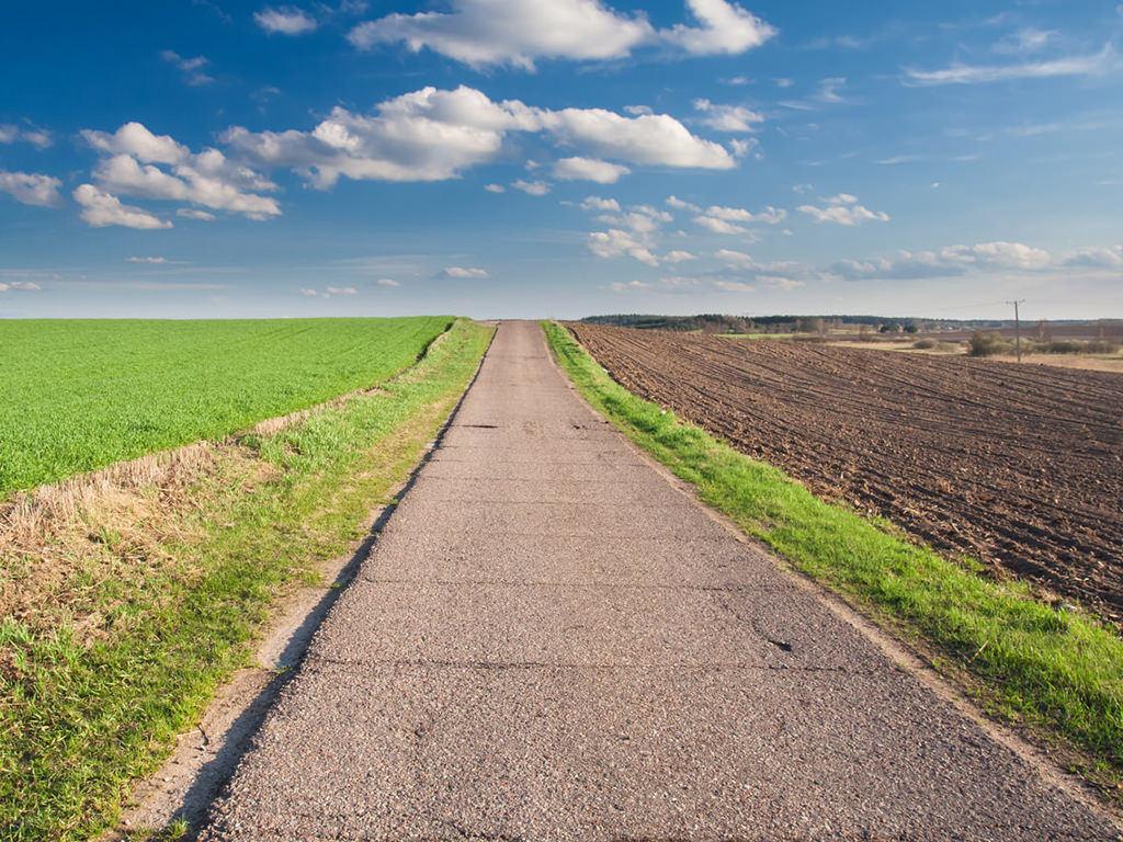Strada in mezzo alla campagna
